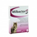 MILBACTOR Large cat  2-8kgr  1x48tabs